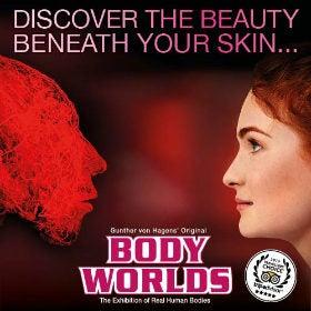 Body Worlds - London London Breaks